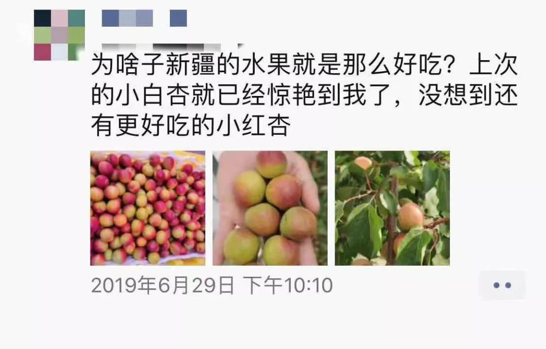 到新疆吃水果.jpg