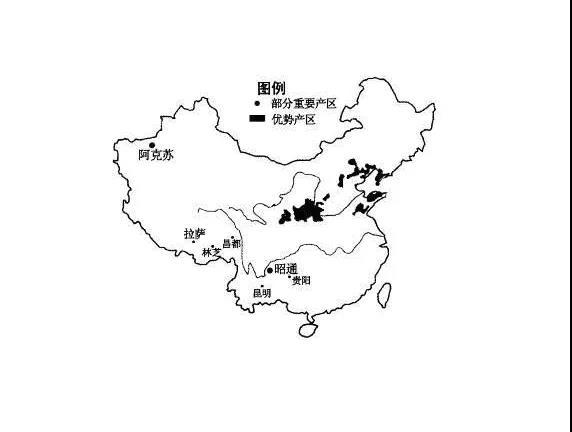 中国苹果主产区.jpg