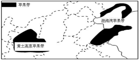 渤海湾和黄土高原苹果产区.jpg