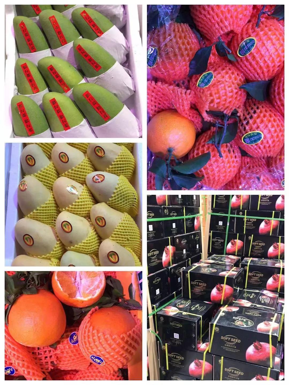 小倪果业的水果品种.jpg