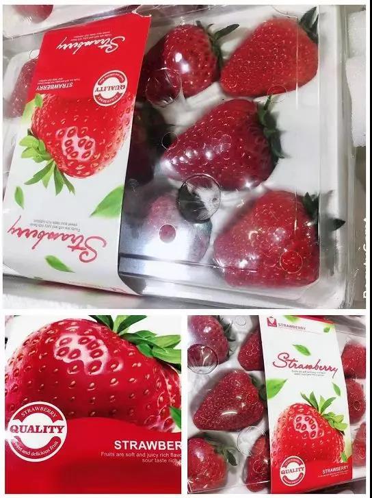 川宝近期热销的草莓.jpg
