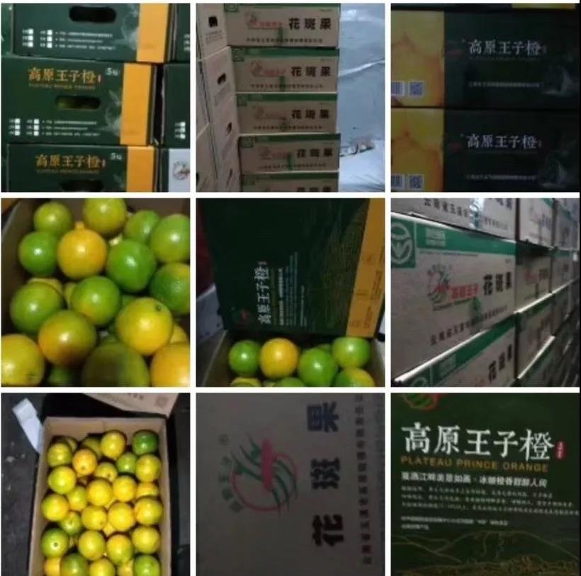 △优滋良果当季国产水果爆品高原王子橙.jpg